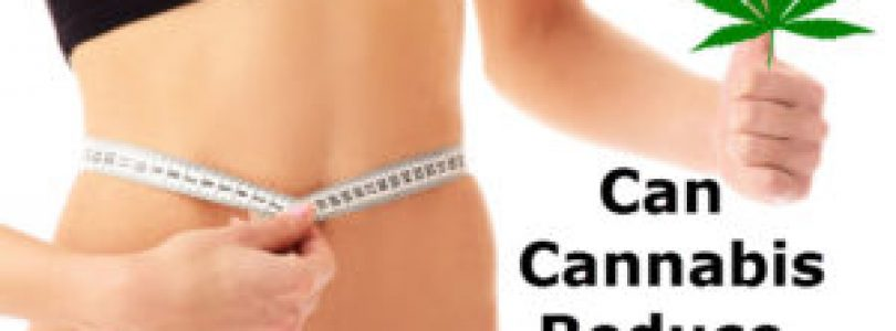 Cannabis For Losing Weight