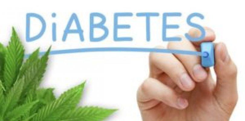 Cannabis Curing Diabetes