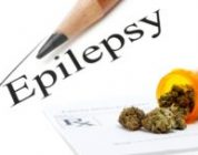 Should Cannabis Be A Real Cure For Pediatric Epilepsy?
